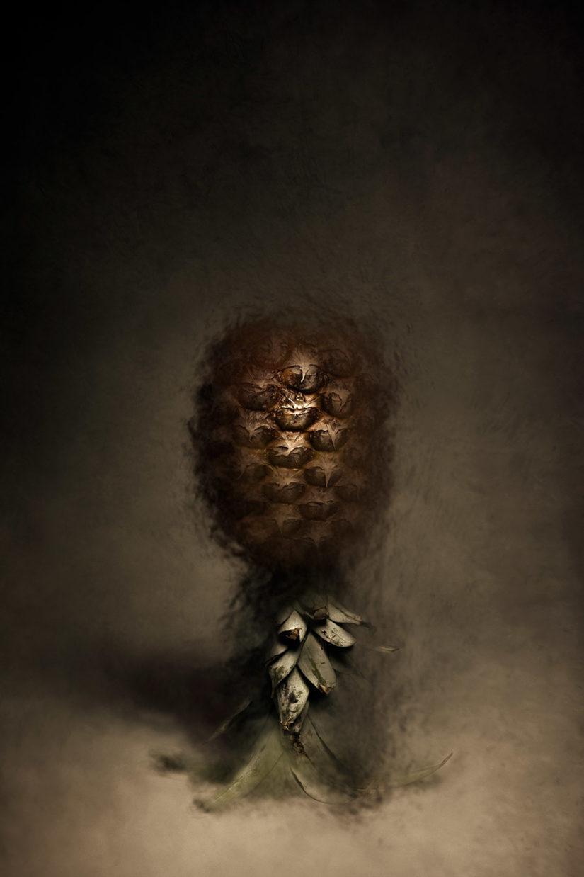 """""""Sad comedian: un ananas"""""""